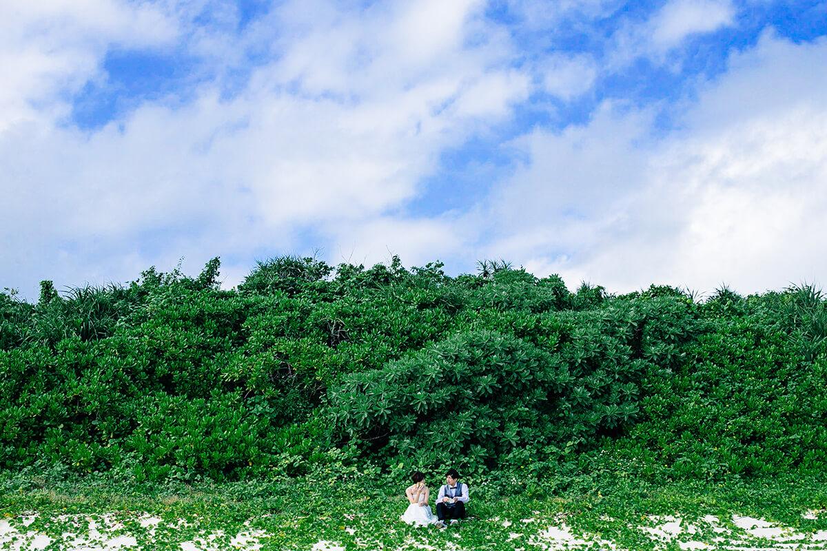 Okinawa Miyakojima - 撫子