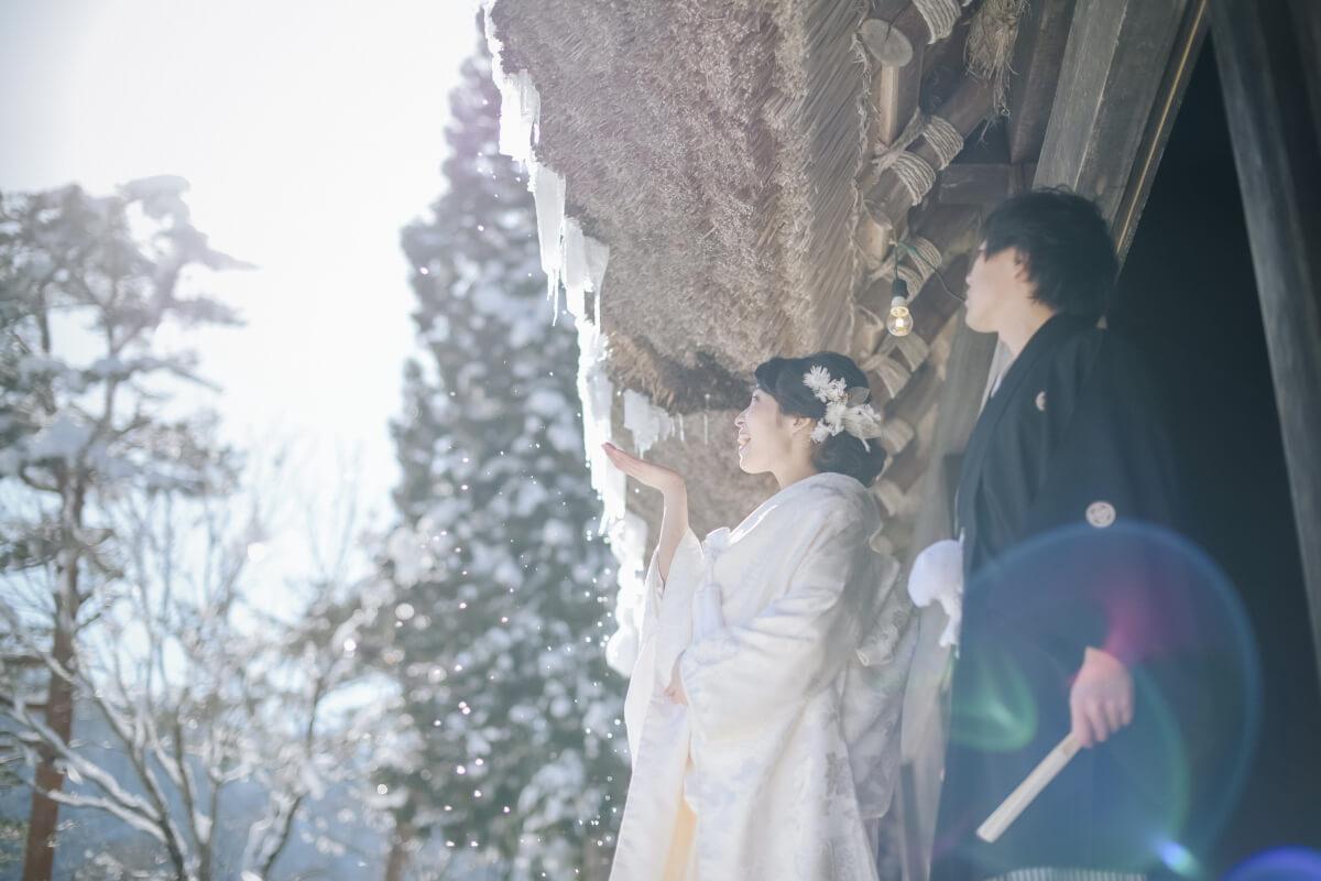 SHIRAKAWAGO - Premium Plan