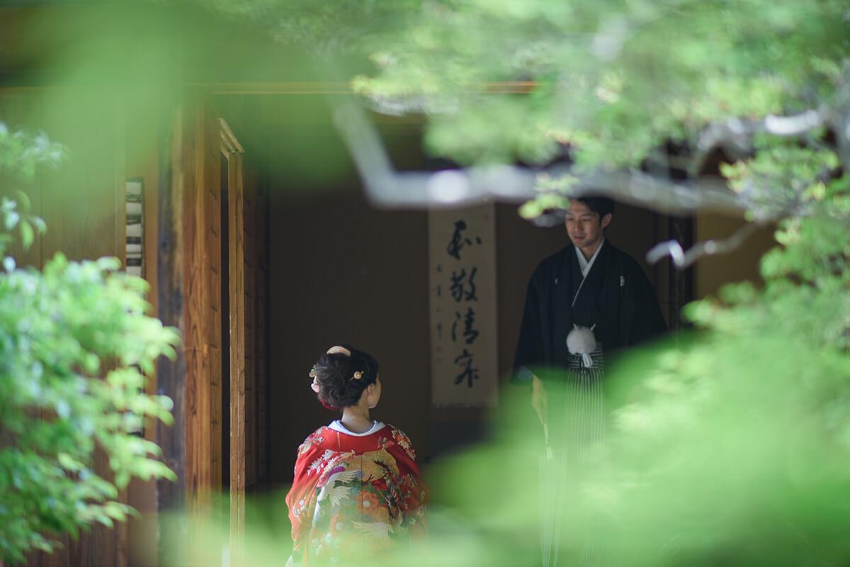 PHOTOGRAPHER-NAGOYA-/GUPPY[NAGOYA/JAPAN]